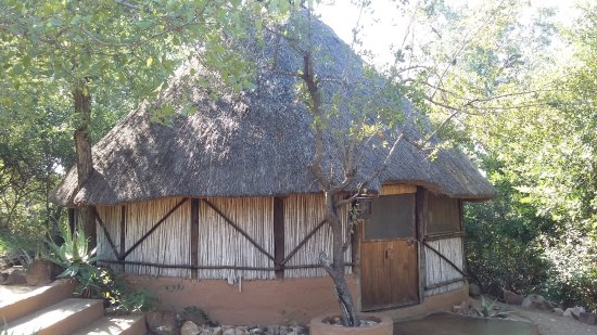 Timbavati Private Nature Reserve, Zuid-Afrika: Rustic but comfy