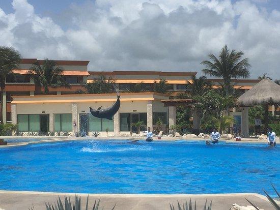 Photo de luxury bahia principe akumal don for Hotel luxury akumal