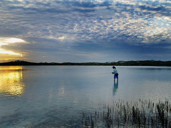 Harbour Club Villas & Marina: Sunset bonefishing just a short ways from our villas