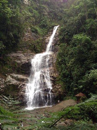 Cascada  en el parque nacional Podocarpus - Zamora Chinchipe