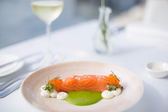 McMahons Point, Австралия: King Ora Salmon, cucumber, yoghurt, champagne vinegar