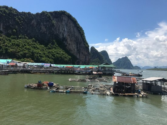 photo1.jpg - Picture of Koh Panyi (Floating Muslim Village), Krabi Town - Tri...