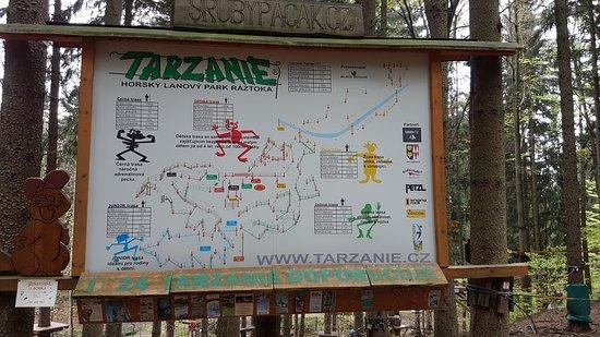Tarzanie
