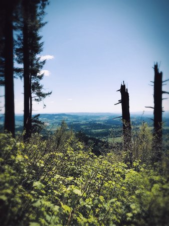 Bald Peak State Park: There's a bench now (finally), where you can seat & enjoy the view!