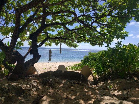 Ha'atafu Beach Resort: catching some shade at the beach