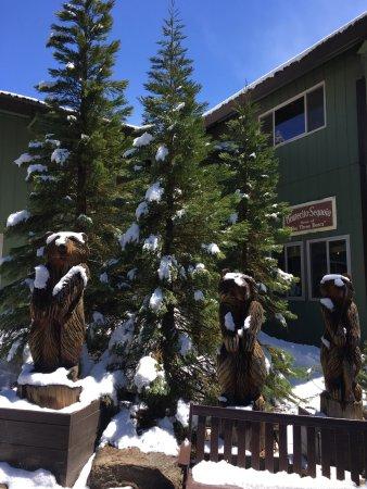 Montecito Sequoia Lodge: photo0.jpg