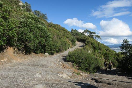 Mount Maunganui Picture