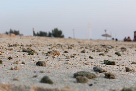 Al Muharraq, Bahrein: photo0.jpg