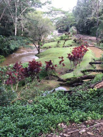 Kilauea, Χαβάη: photo8.jpg