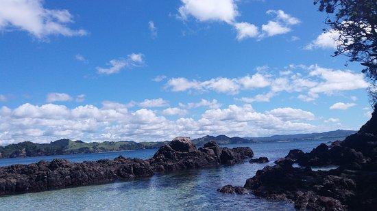 Tutukaka, New Zealand: Whale bay