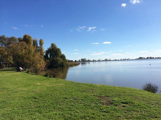 Kerang, Австралия: Reedy Lake Reserve