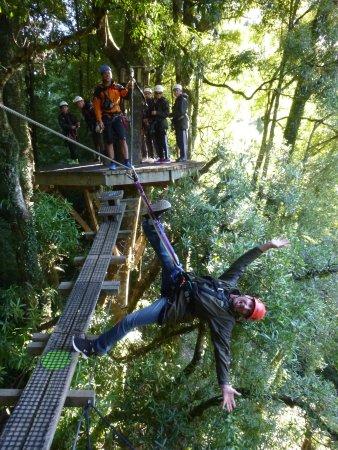 Rotorua Canopy Tours: Confident as.