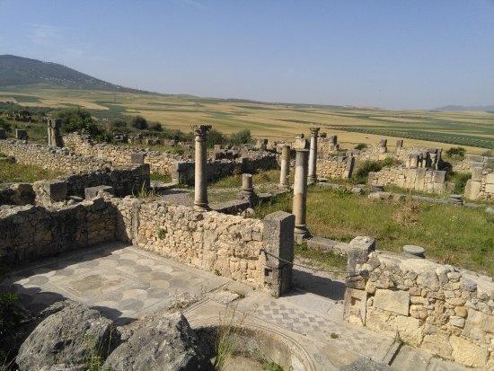 Diyar Timnay : Volubilis est tout proche