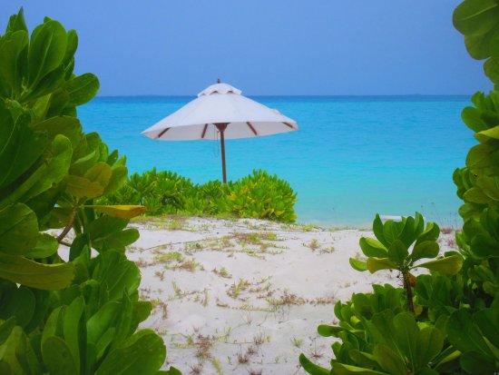 Haa Alif Atoll Resmi