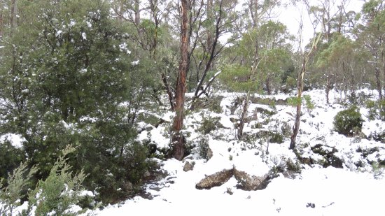 Poatina, Australia: Snow - in early May