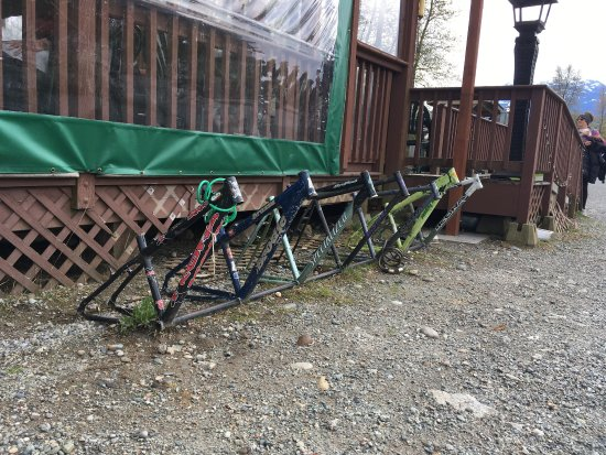 Brackendale, Canada: Eco-friendly bicycle parking 🚲