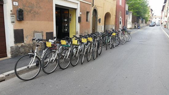 Girobike Snc