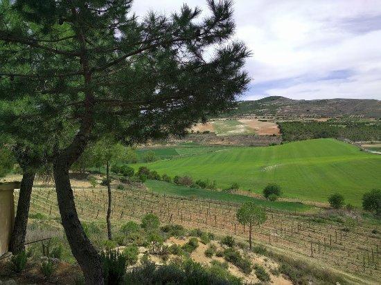 Huete, Spanien: Espectacular paisaje de los viñedos