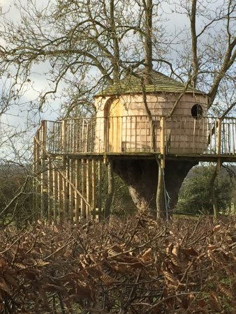 Clee Stanton, UK: The treehouse
