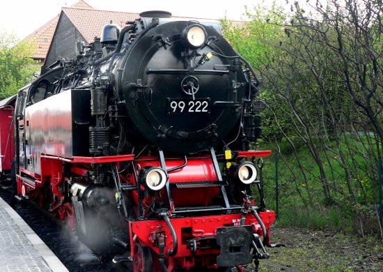 The Brocken Train Line: Train at Wernigerode waiting to start