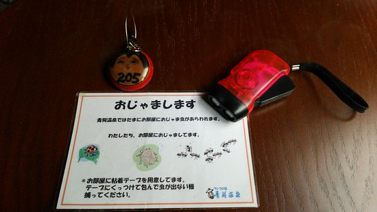 Lamp no Yado Aoni-onsen: DSC_6125_large.jpg