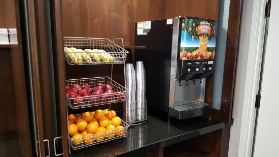 Wingate by Wyndham Los Angeles International Airport LAX: Яблоки, апельсины, бананы из фруктов