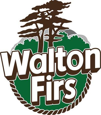 Walton firs