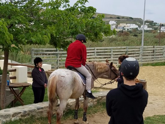 Syros, Grecja: Warming up in the riding ring, and trails close by!