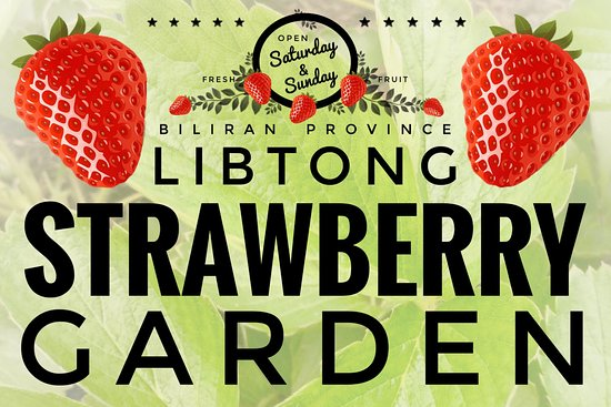 Naval, Philippinen: Libtong Strawberry Garden sign