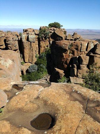 Graaff-Reinet, แอฟริกาใต้: Vegetation