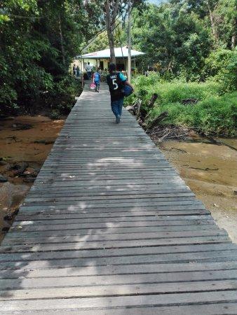 Tioman Paya Resort: Not safe for walking