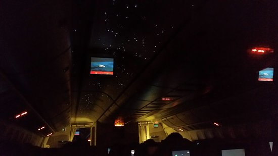 Beautiful cabinjust loved the starlight ceilingce emirates beautiful cabinjust loved the starlight ceiling mozeypictures Image collections