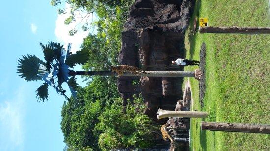 巴厘遊獵和水上公園照片