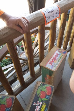 Palisade, CO: Vintage fruit crates for sale