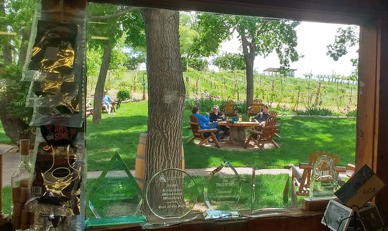 Palisade, CO: Looking through the window to the picnic area