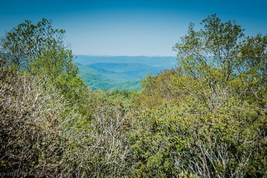 Rosman, Carolina del Norte: Views from top of Sassafras