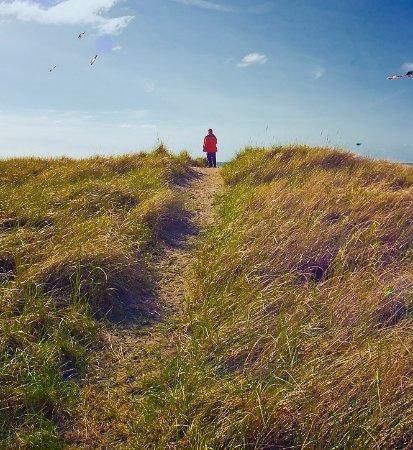Akari Bungalows: Path to the beach