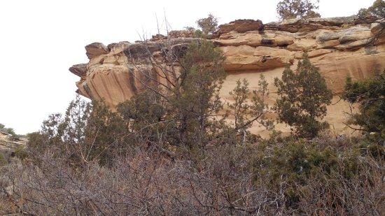 Tabeguache Trail: Heading to Bangs Canyon