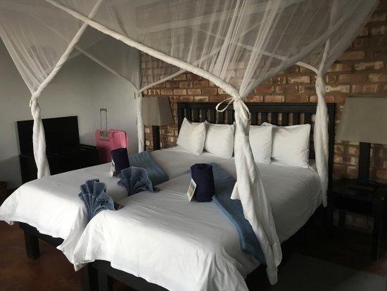 Etosha Safari Lodge : La camera