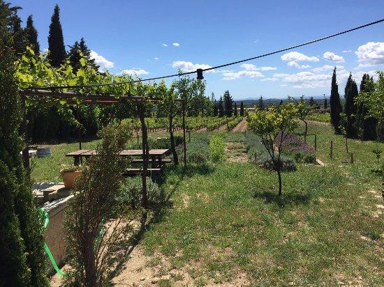 Cantallops, España: IMG-20170507-WA0085_large.jpg