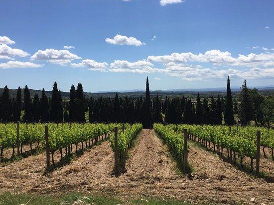 Cantallops, España: IMG-20170507-WA0089_large.jpg