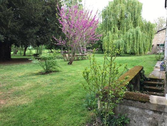 Vouneuil-sur-Vienne, France: Vue du parc depuis la chambre papiers de soie