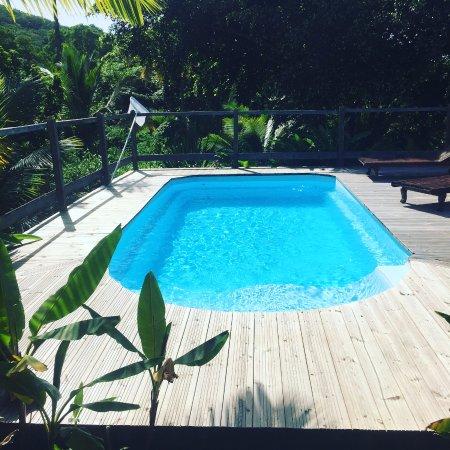 Repaire Jade & Jack : espace piscine