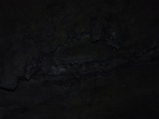 Waipu Cave
