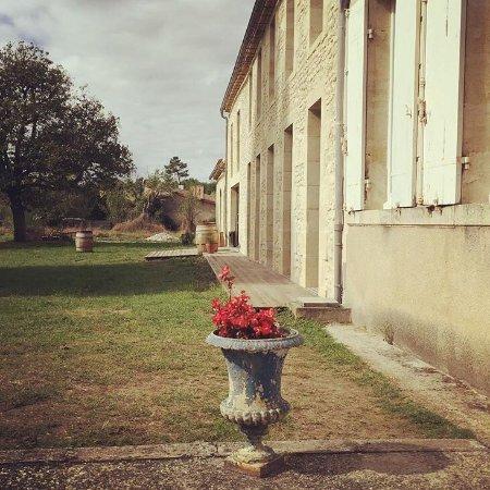 Listrac-Medoc, Prancis: photo2.jpg