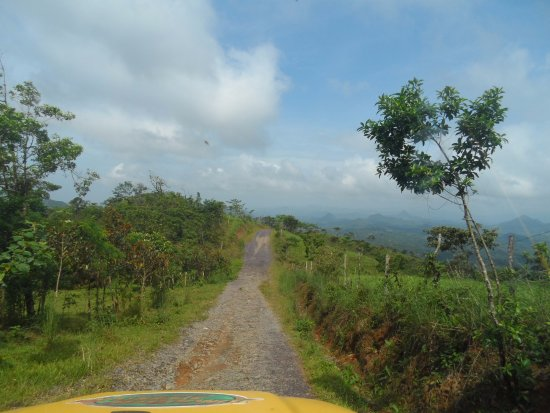 Jungle Jeep Adventure: on the road