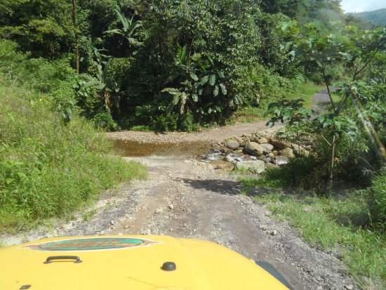 Jungle Jeep Adventure: A small stream along the way