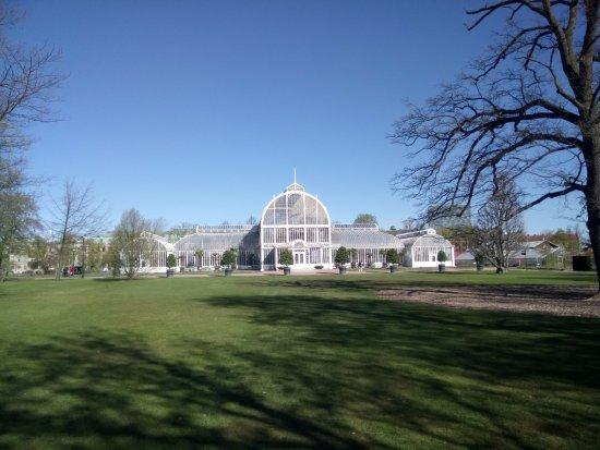 Horticultural Gardens (Tradgardsforeningen): Palmhuset in the gardens.