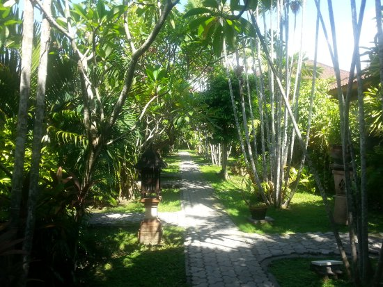 Bumi Ayu Bungalows: 20161105_072233_large.jpg