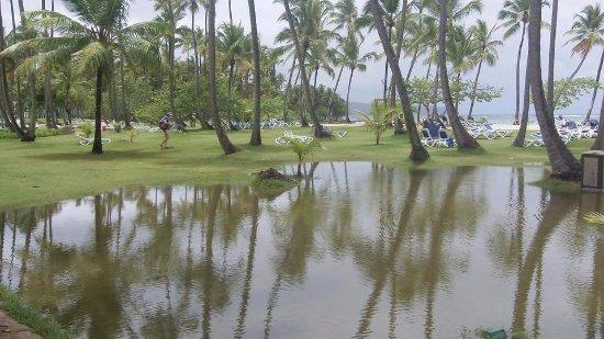 Las Galeras, Dominican Republic: sur le site du Grand paradise Samana